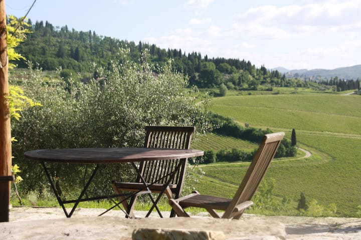 Stay on a Chianti Rufina vineyard, near Florence!