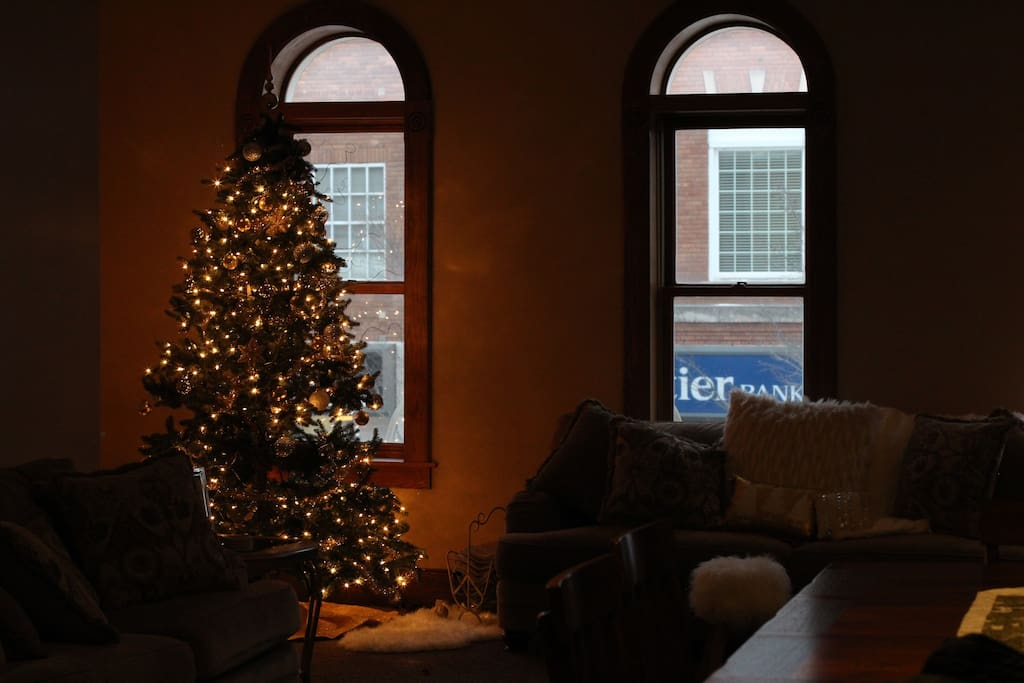 Family Room with two couches and Christmas Tree