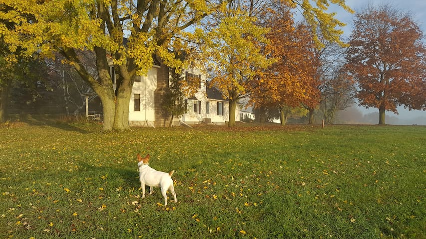 Blue Sky Farm - Deerfield - Huis