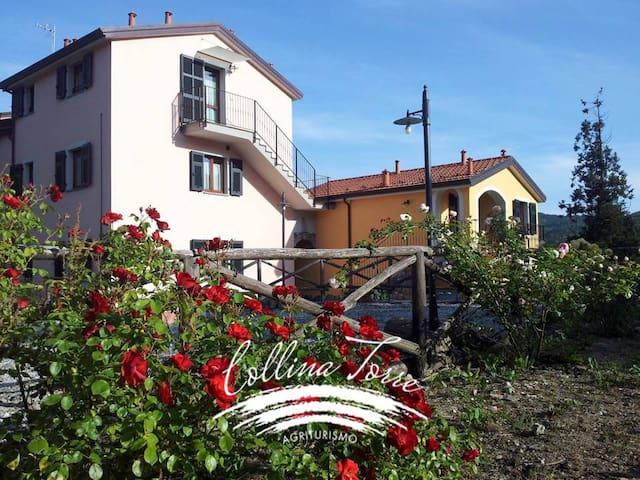 AGRITURISMO COLLINA TORRE Poiana apartment