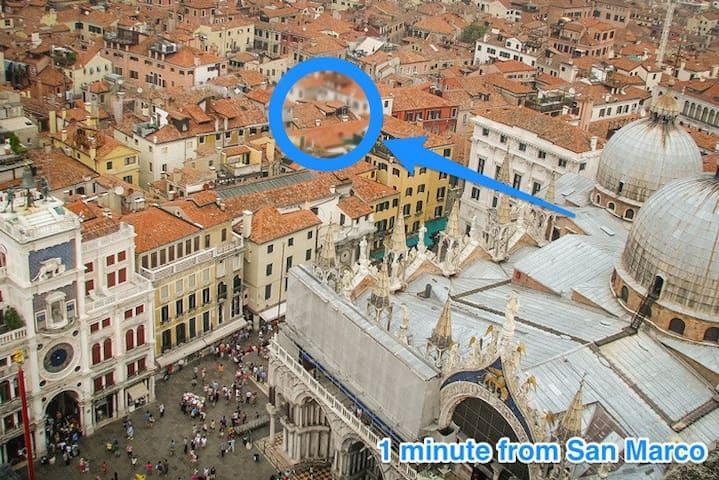 Royal Loft. Center! San Marco! View
