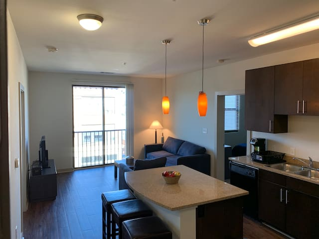 Luxury Apt - Downtown Condo and Excellent Location