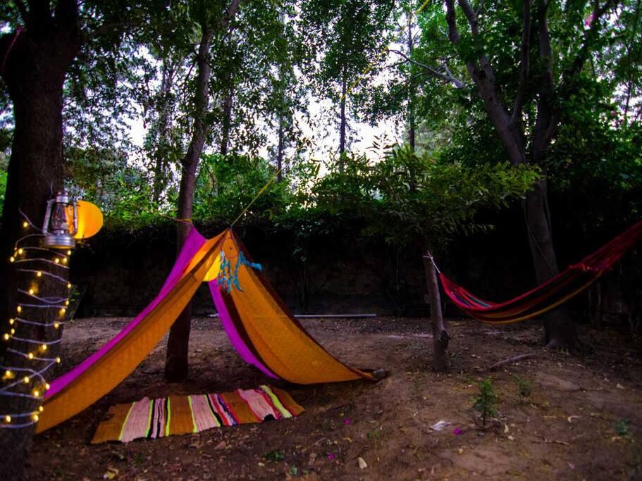 Laze around on the hammocks like a hippie