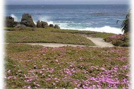 BEACH COTTAGE, two blocks to ocean! - Pacific Grove
