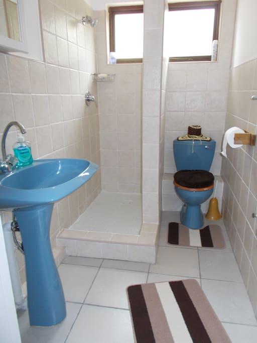 Shower, toilet, basin.