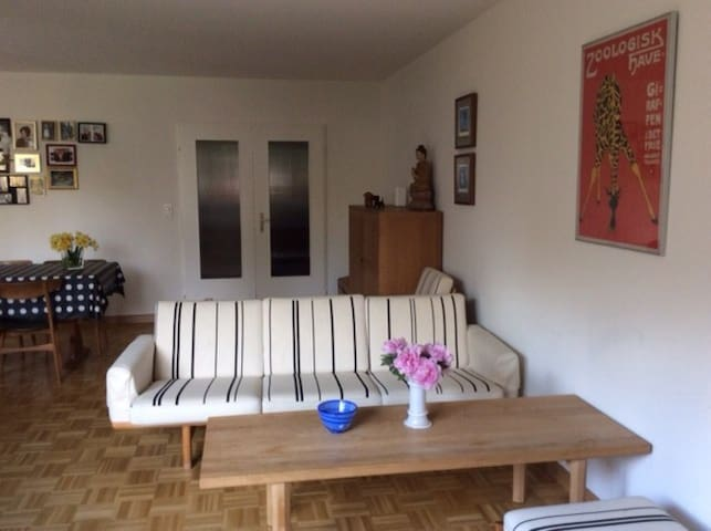 Family friendly garden flat - Birsfelden - Hus