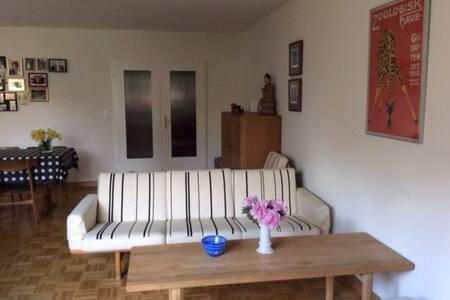 Family friendly garden flat - Birsfelden