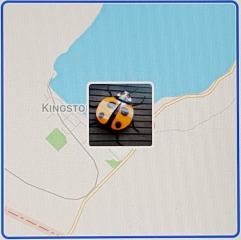 Ladybird Landing, 82 Dorset Street, Kingston, Otago