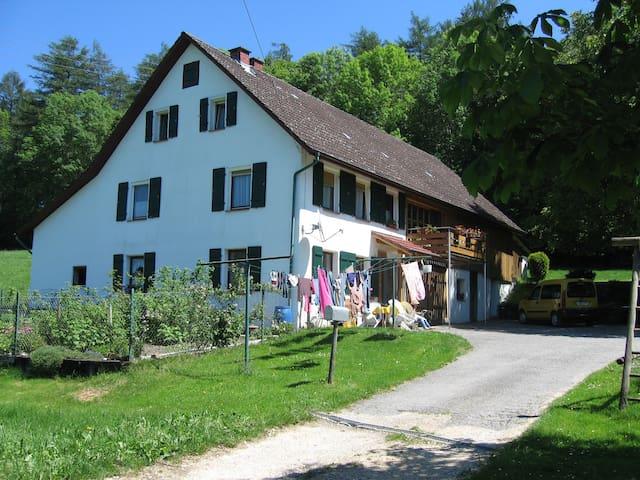 Schwalbennest (Nähe Bodensee 11km)
