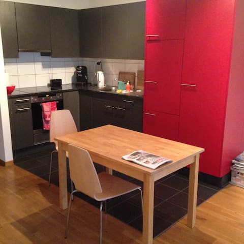 Nice town apartment in kleinbasel near Messe Basel - Basileia
