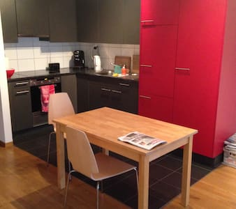 Nice town apartment in kleinbasel near Messe Basel - Basel - Apartament
