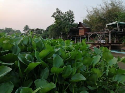 บ้านไทยThai House