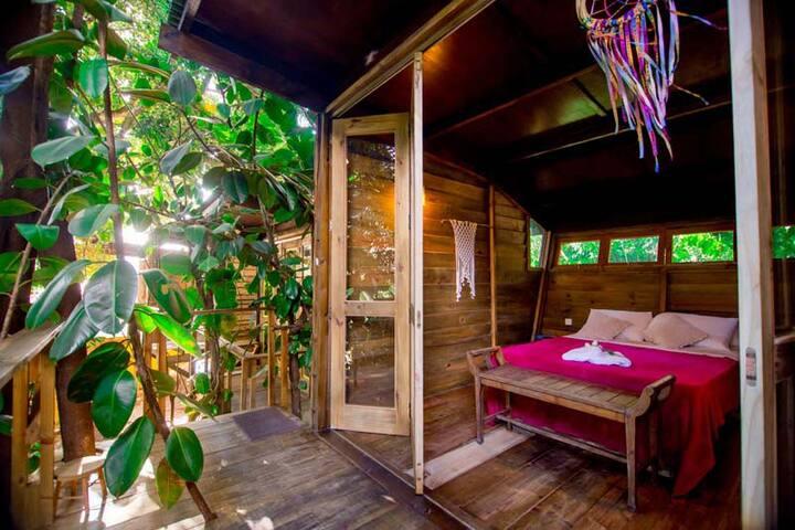 Casa na Árvore (Eucalipto) - Hostel da Vila