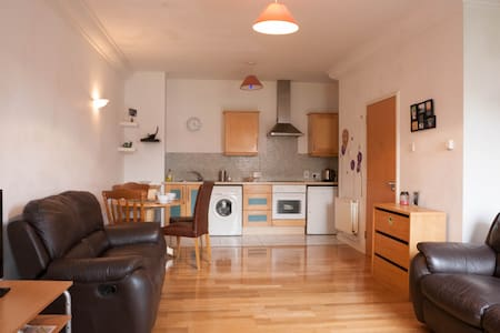 One bed new apartment in IFSC AREA. - Dublin1 - Apartment