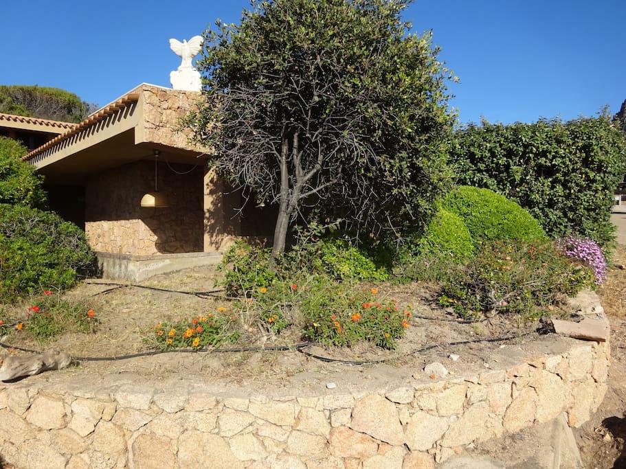 panoramica  giardino Sole 2 sottostante la piscina