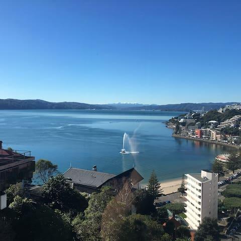 Oriental Terrace apartment - Wellington - Daire