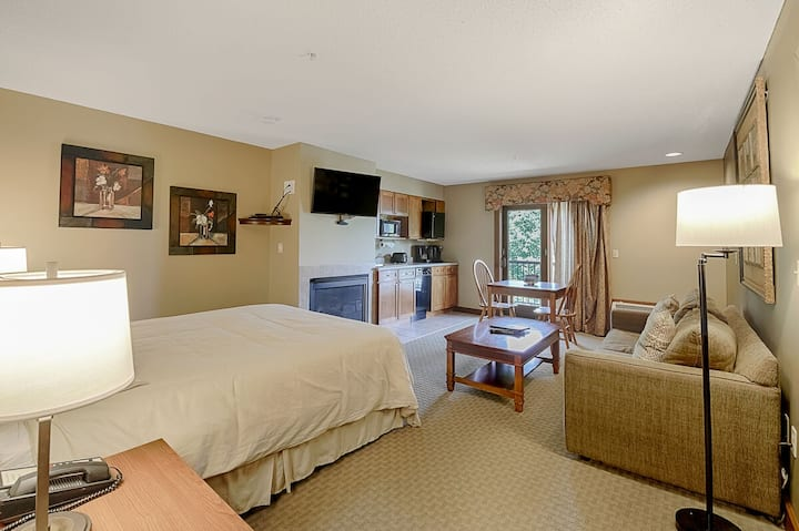 A213- Studio suite w/ lake view, sleeps four & has a cozy fireplace!