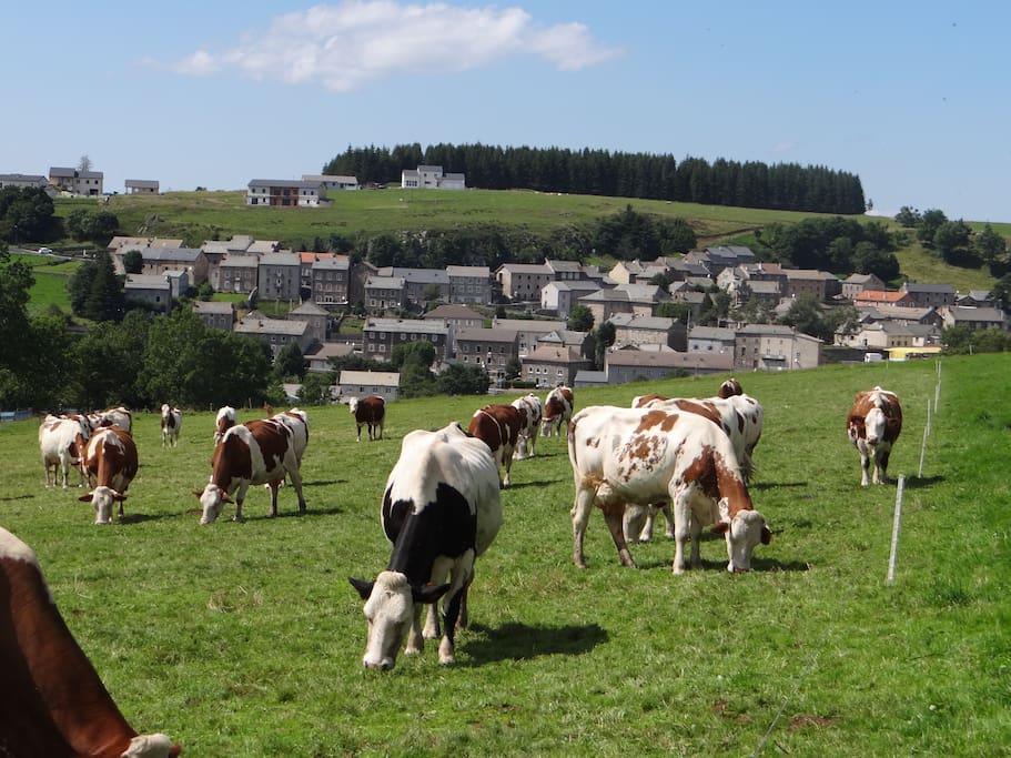Le village tourné plein sud