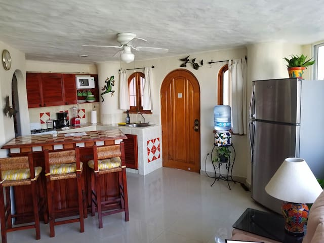 Entry into Kitchen/Living Room