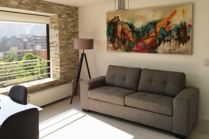 Great Apartment in Providencia.