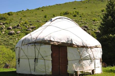 Deluxe Yurt (3 people)