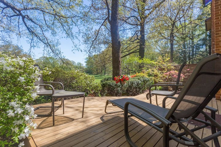 Gorgeous Clean Private Well Furnished Entire Level