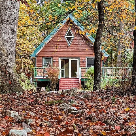 The Birdhouse: dog-friendly, charming cabin