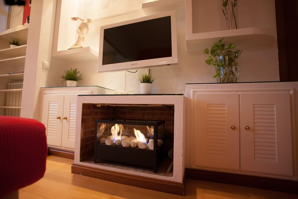 Bioethanol fireplace, without smoke or odors
