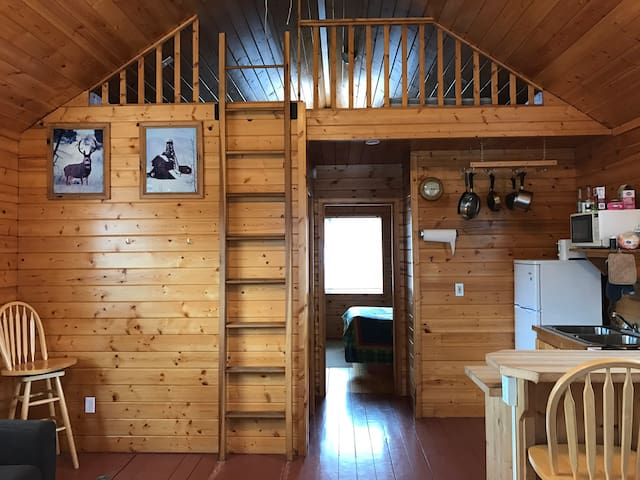 Tomichi Creek Resort Cabin