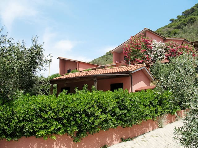 Apartment Res. Elbamar Lacona I for 4 persons