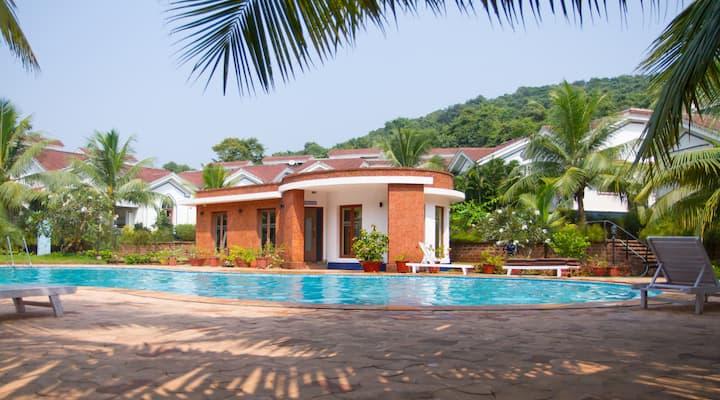 Cozy Apartments Arpora : 1BHK with swimming pool