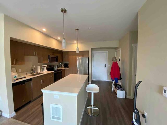 One bedroom apartment in Bellevue