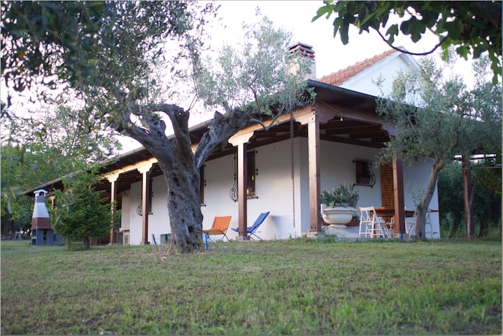 Beautiful and quiet villa in the countryside - Morro D'oro - House