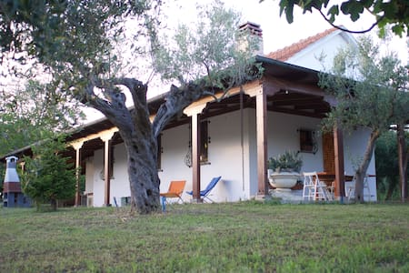 Beautiful and quiet villa in the countryside - Morro D'oro
