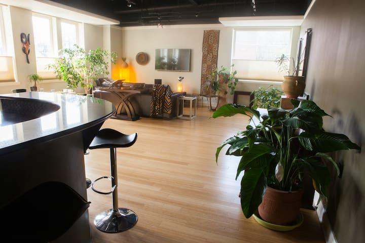 Luxury Loft Apartment on Bathhouse Row - Hot Springs - Apartment