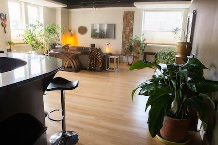 Luxury Loft Apartment on Bathhouse Row - 溫泉(Hot Springs) - 公寓