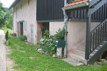 Appartement dans ferme rénovée 5/7p - Gerbépal - Huis