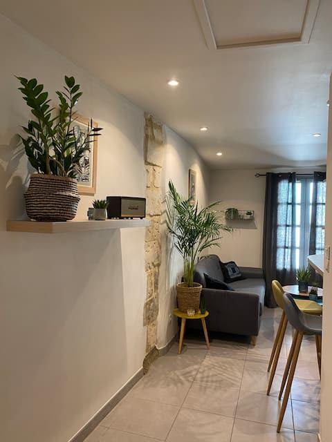Appartement de standing centre ville Avignon