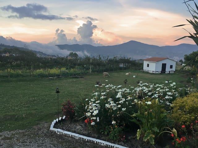 ZONA DE CAMPING - La Granja de Los Abuelos  Pasto