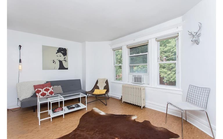 Charming Brooklyn 1 Bedroom Apartment