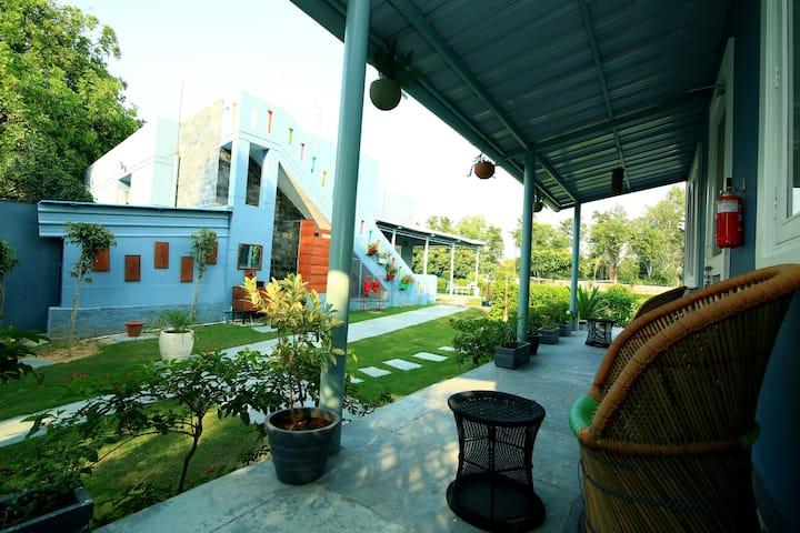 Grey Cottage Farms - A D10 Venture