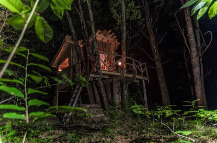 Cabane perchée en plein coeur d'une forêt.