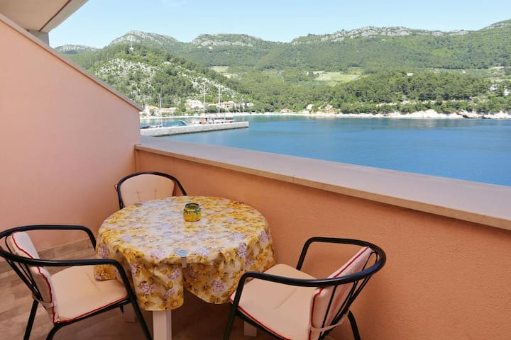 Studio flat near beach Trstenik, Pelješac (AS-10110-b)