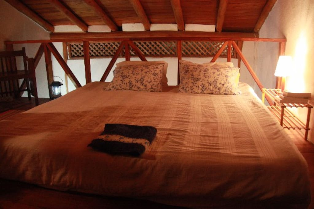 Oceanica los roques guest house case in affitto a ve for Piani di casa con guest house annessa