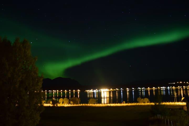 Northern light lodge - Lyngen