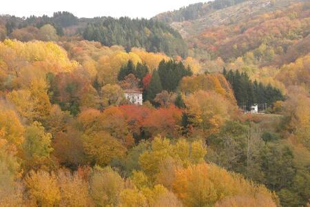 Century old Villa Dante in Montefegatesi - Montefegatesi