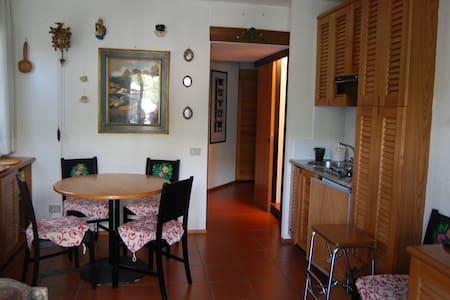 Appartamento ideale per chi scia - Madesimo - Flat