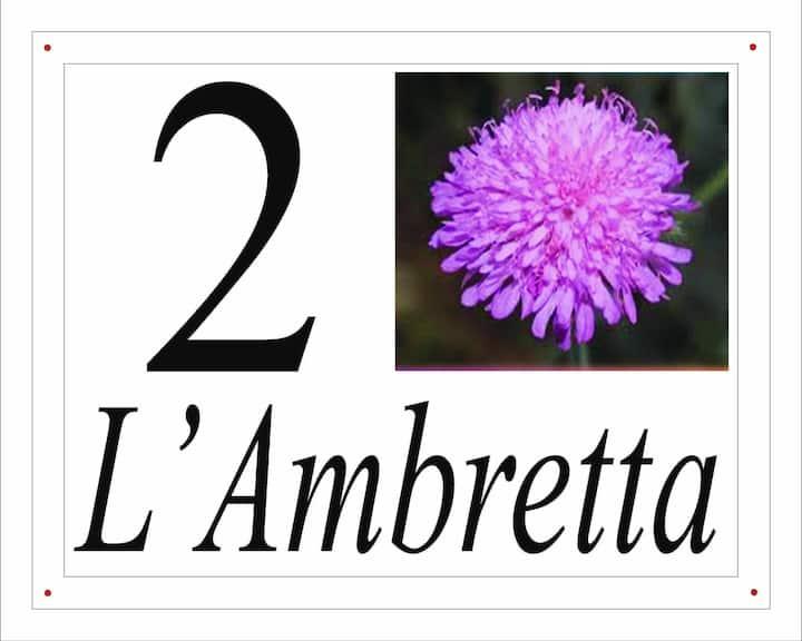 I fiori del Pollino - L'Ambretta