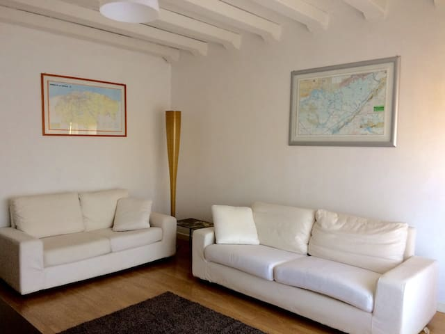 Bright and spacious apartment - Bassano del Grappa - Daire