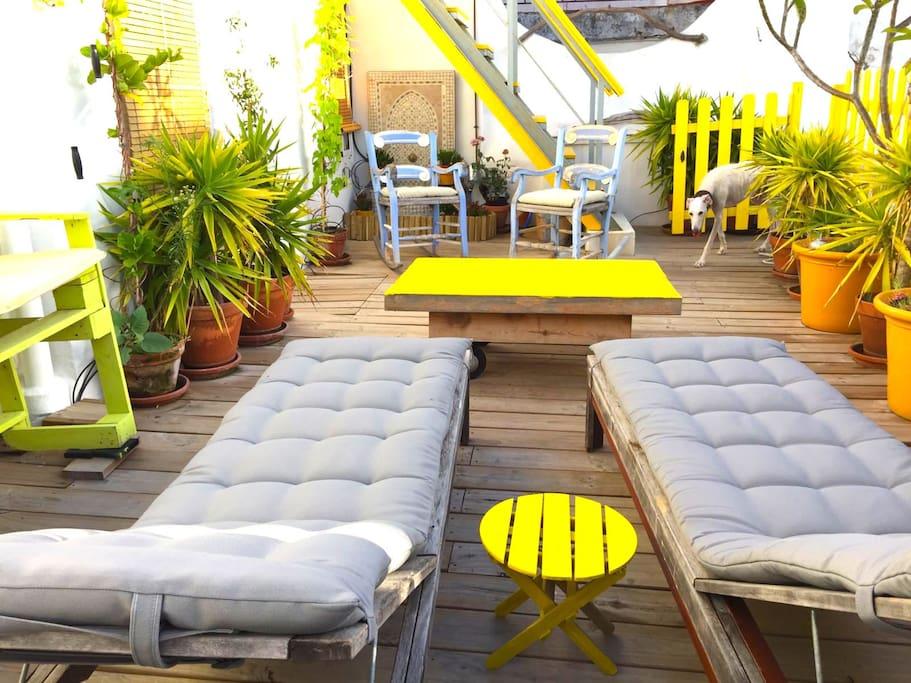 terraza con tumbonas